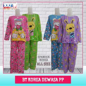 bt korea dws pp